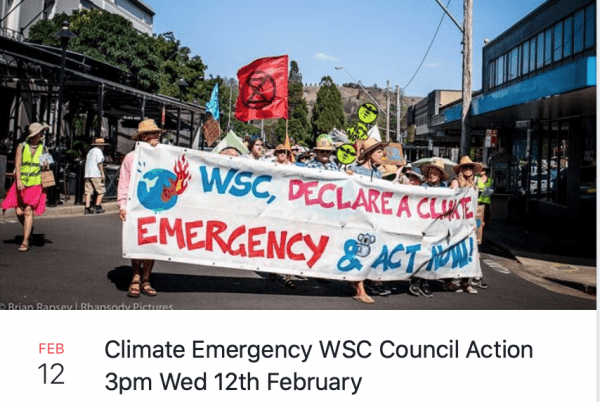 Climate Emergency Wingecarribee March Bowral